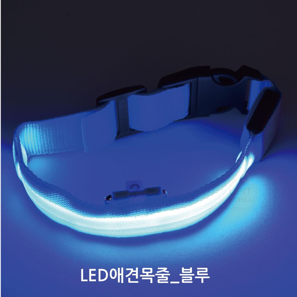 LED 애견목줄_블루